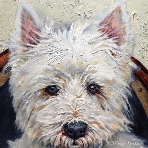 Происхождение породы West Highland White Terrier