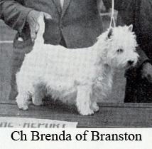 BrendaB - Copy