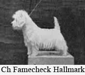 FamecheckHallmark