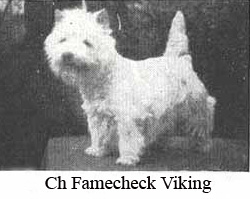 FamecheckVikingb - Copy