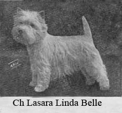 LasaraLindaBelle